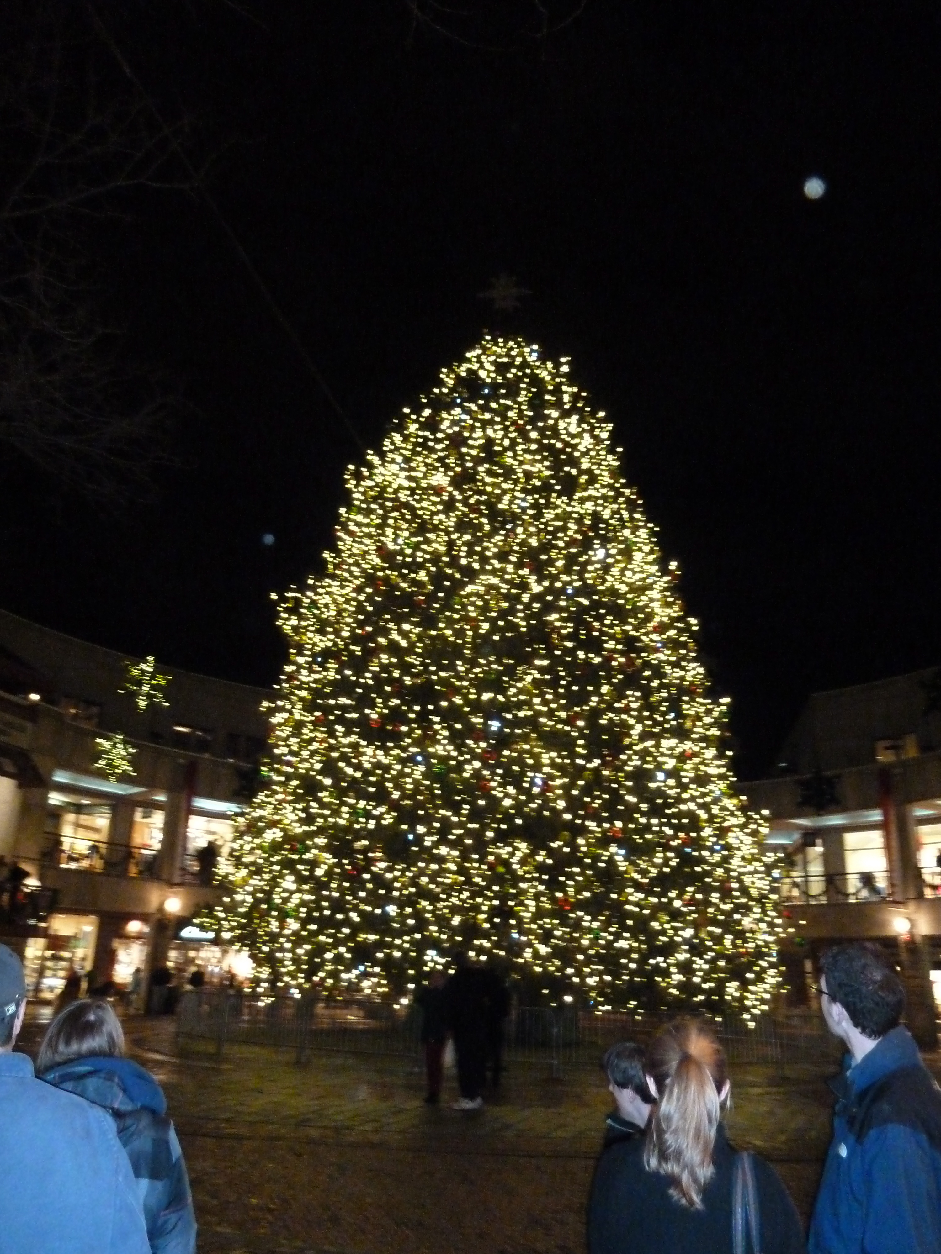 Beautiful Christmas Tree at Faneuil Hall