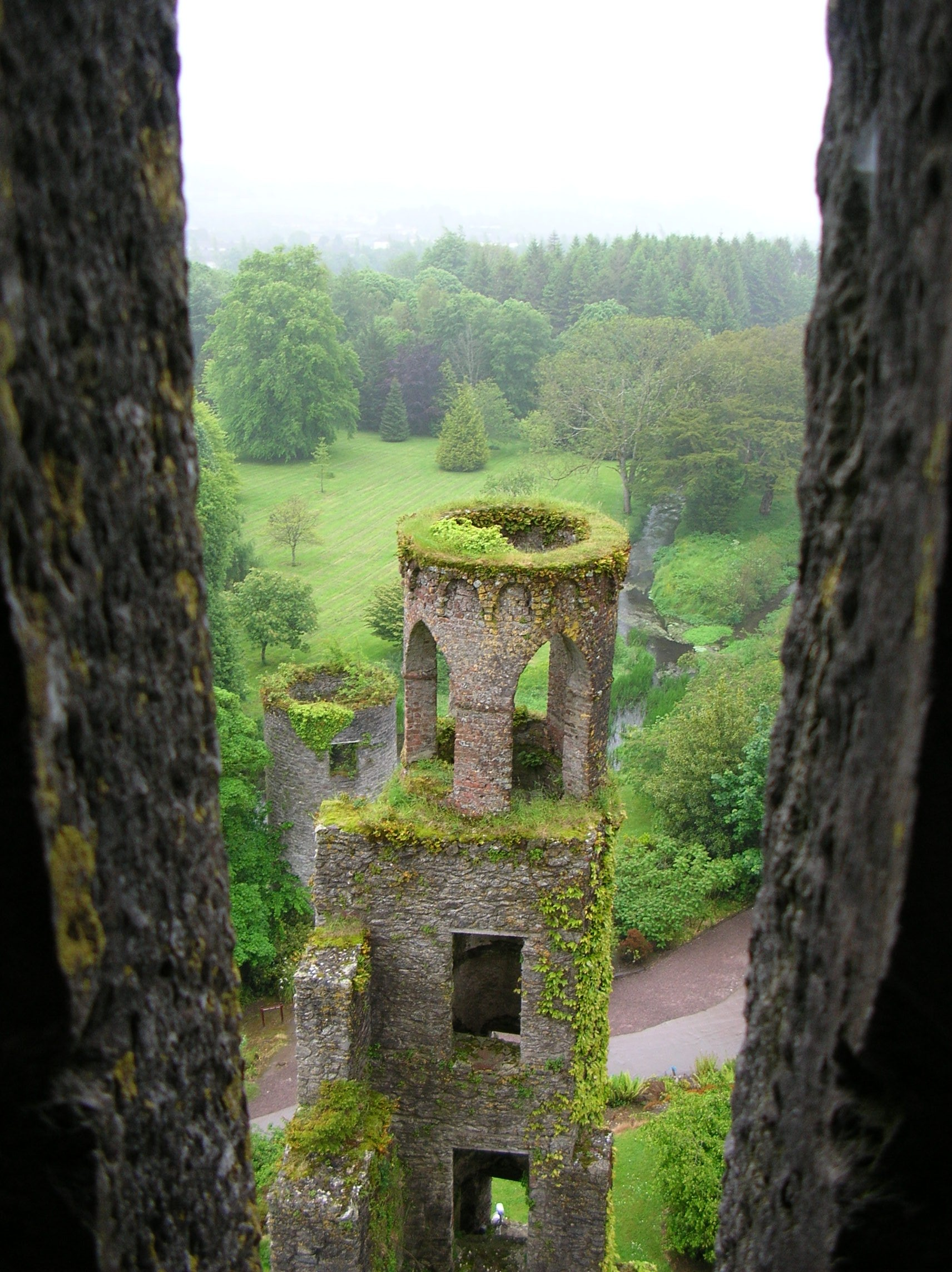 A view out of Blarney Castle on a moody day.